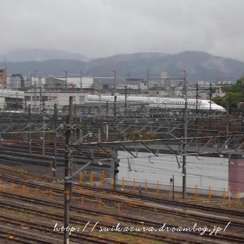 京都2019(31)