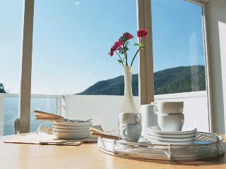 夏の食卓ハーフ