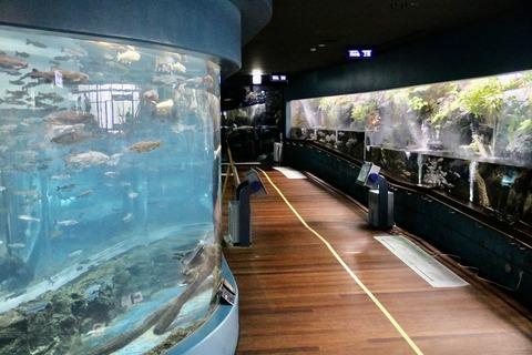 山梨県立富士湧水の里水族館 森の中の水族館-8