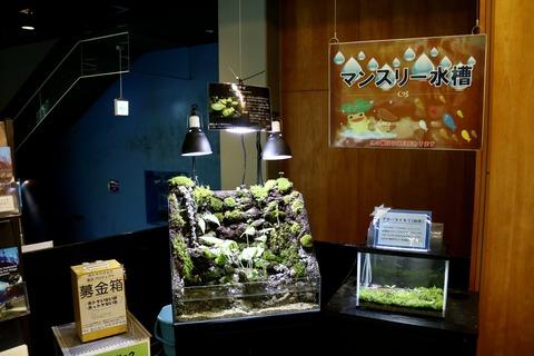山梨県立富士湧水の里水族館 森の中の水族館-2