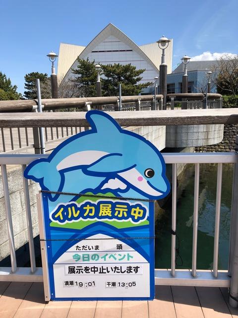 鹿児島水族館 いおワールド-20