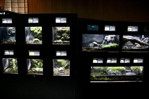 山梨県立富士湧水の里水族館 森の中の水族館-40