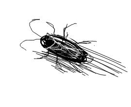 livejupiter-1537268512-139-270x220