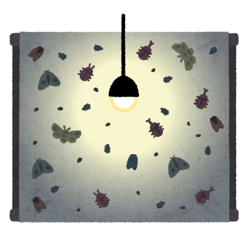 bug_light_trap