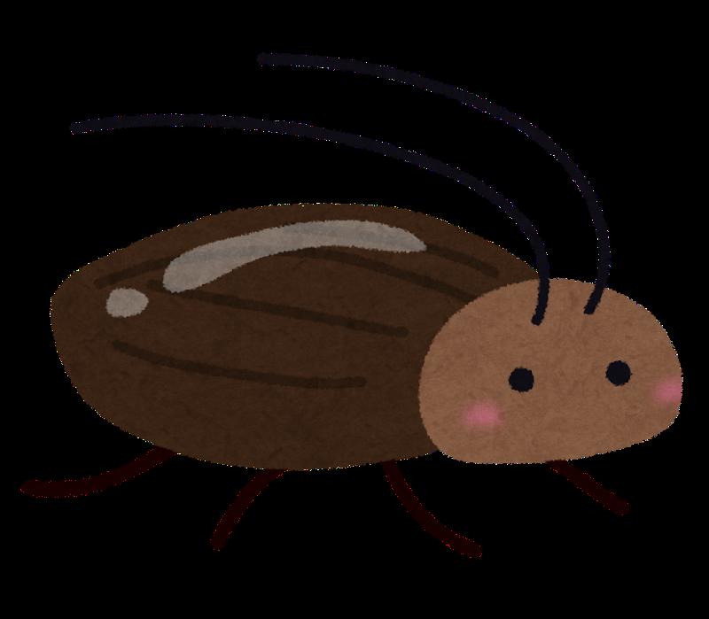 bug_gokiburi (4)