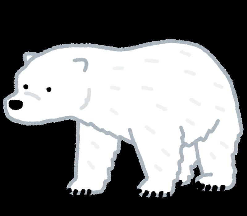 animal_bear_hokkyoku