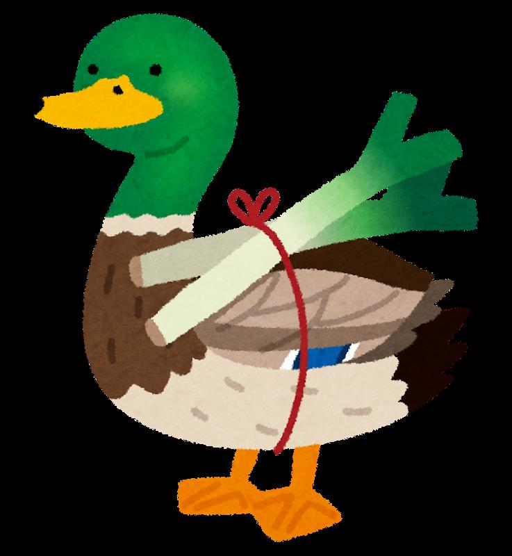 bird_kamonegi