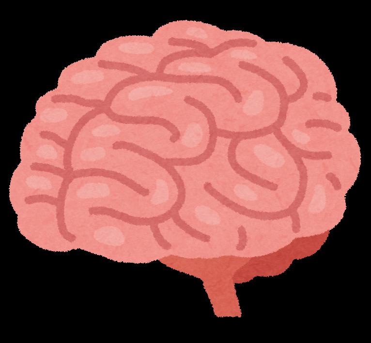 body_brain_nou (6)