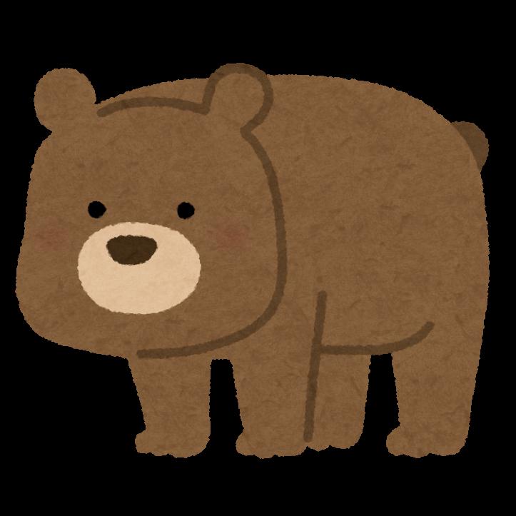 animal_bear_character