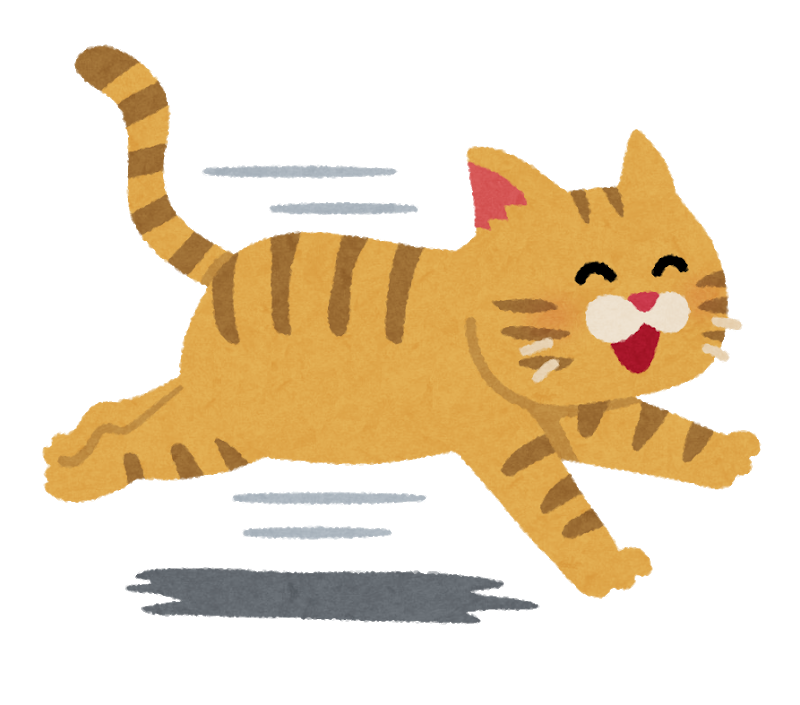 run_cat_smile