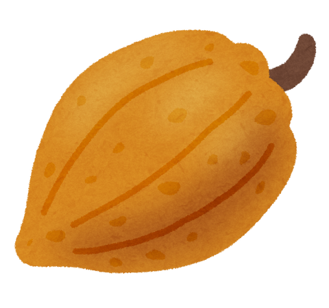 fruit_cacao_kakao (1)