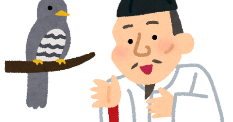 hototogisu_toyotomi_hideyoshi (3)