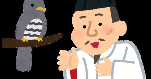 hototogisu_toyotomi_hideyoshi (1)