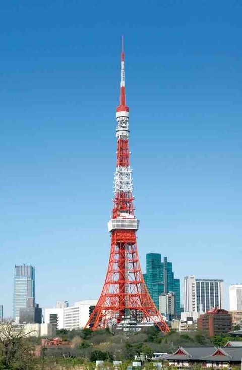 東京タワーの頂上から、謎の「野球ボール」が発見されたことがある。