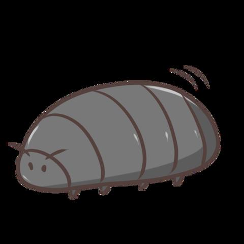 ダンゴムシのおもしろい生態をご紹介!