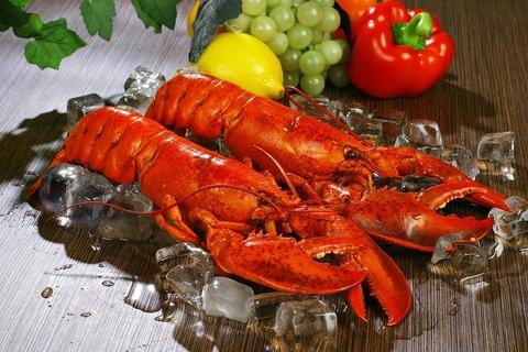 lobsters-1527602_960_720