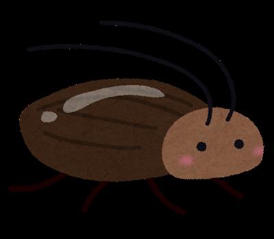 ゴキブリは頭を失っても1週間は生きる!?その他ゴキブリの雑学