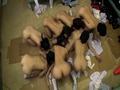 7人の女子校生と突然部室に閉じ込められた1人の男教師-18