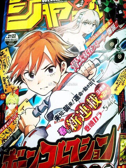 【悲報】ジャンプの新連載ボーンコレクション、ヤバイwwwww