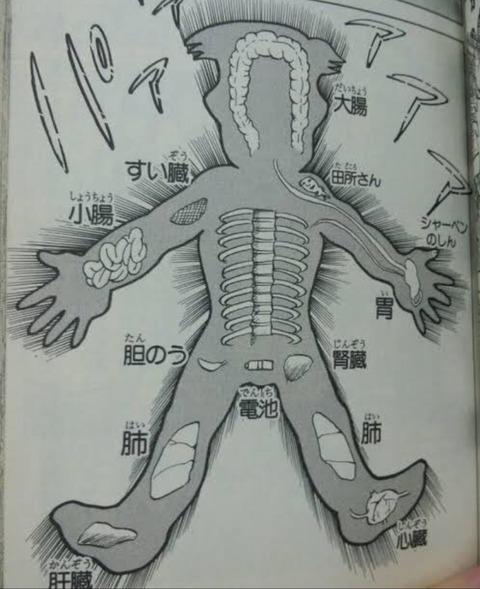 91d11bbd s - 島袋光年「トリコは構想31巻。どうせたけしのように24巻まで伸びるでしょうけど笑」