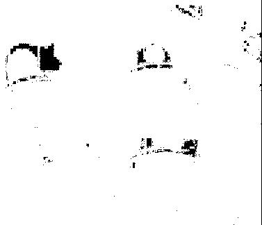 emporio