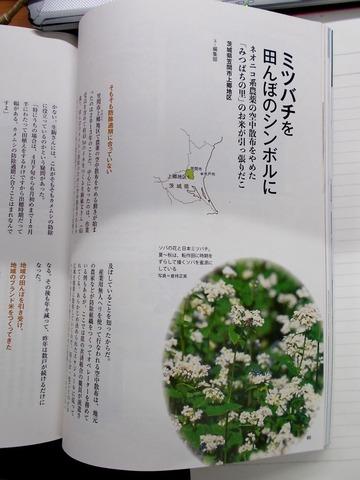 170727季刊地域30・笠間上郷のミツバチ記事