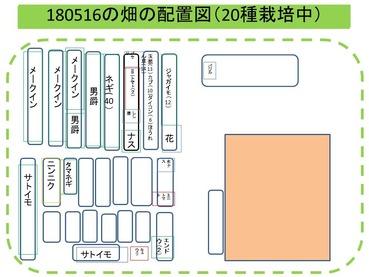 畑配置図180516