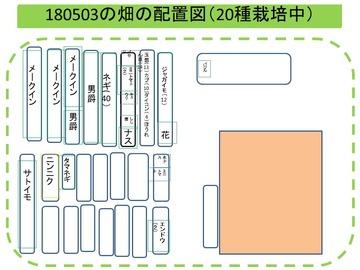 畑配置図180503