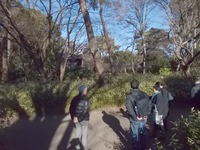 190118自由学園森の径