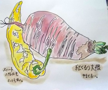 180704野菜大根とパレルモ