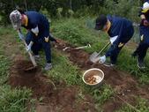 180722中学生民家体験2ジャガイモ掘り
