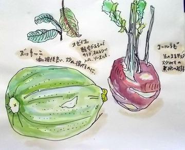 180704野菜ズッキーニ他