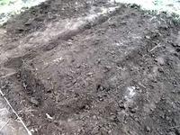 161130コカブ稲種蒔き完了