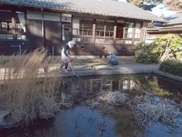 190118自由学園池の清掃芝管理