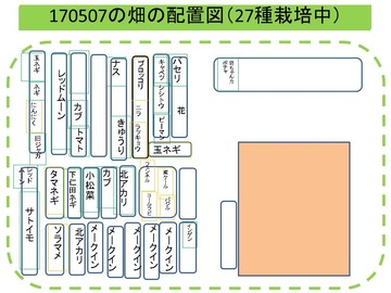 170507の野菜組配置図
