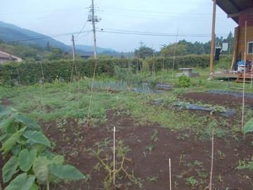 180713今日の畑2