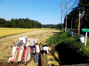 170914夫婦で働く稲刈りコンバイン