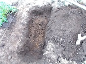 170901ダイコン畝を掘り下げる