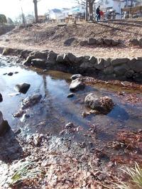 191230氷の張った神田川源流