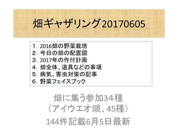 ギャザリング170604