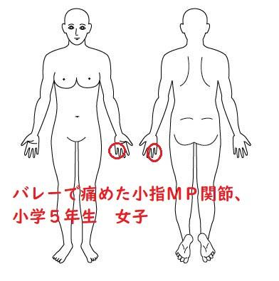 人体図 - コピー - コピー (2)