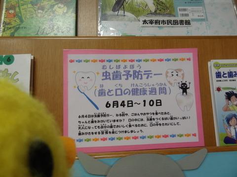 DSC08647