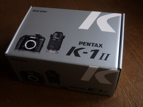 P9130133 (640x480)