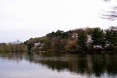 100404石神井公園三宝寺池