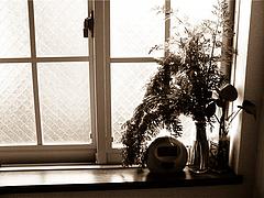 100531窓