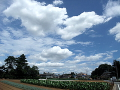 090807雲