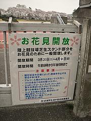 100407お花見開放看板@武蔵野市体育館陸上競技場