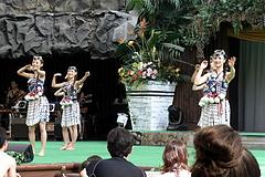 100831ニュージーランドマオリのダンス@スパリゾートハワイアンズ