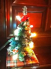 101224ミニクリスマスツリー