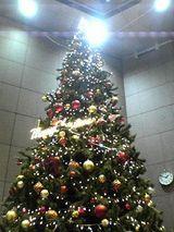 061127クリスマスツリー